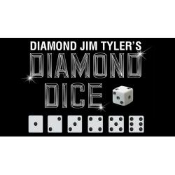Diamond Forcing Dice Set (7) by Diamond Jim Tyler - Trick wwww.magiedirecte.com