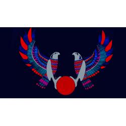 BIRD TWO - BRAINWAVE: CARD 8 (Deluxe Edition) - Jeff Stone wwww.magiedirecte.com