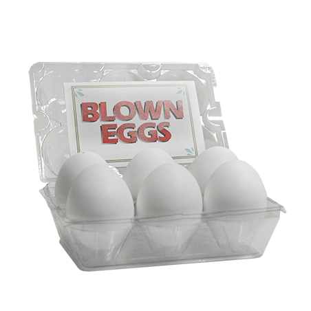 HIGH QUALITY BLOWN EGGS (Blanc / 6 Pieces) wwww.magiedirecte.com