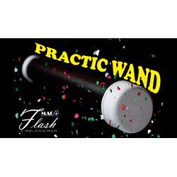 PRACTIC WAND wwww.magiedirecte.com