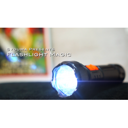 MAGIC FLASHLIGHT (2PK)  (Tejinaya Magic) wwww.magiedirecte.com