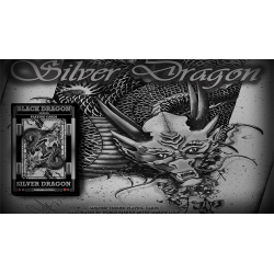 Silver Dragon by Craig Maidment wwww.magiedirecte.com