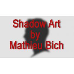 SHADOW ART (Bat Man) wwww.magiedirecte.com