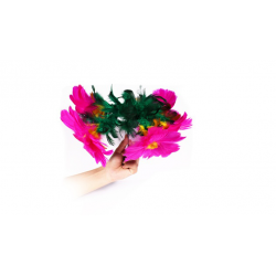 FLOWER SALUTE wwww.magiedirecte.com
