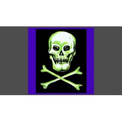 "Rice Symphony Silk 36"" (Skull and Cross Bones) by Silk King Studios - Trick wwww.magiedirecte.com"