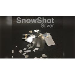 SNOWSHOE SILVER - (10 pièces.) wwww.magiedirecte.com