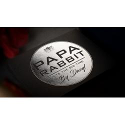 PAPA RABBIT HITS THE BIG TIME wwww.magiedirecte.com