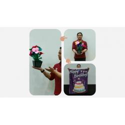 FLOWER POT V2 TO BLENDO - (HAPPY BIRTHDAY) wwww.magiedirecte.com