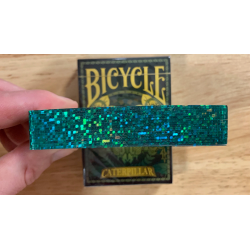 Gilded Bicycle Caterpillar (Dark) Playing Cards wwww.magiedirecte.com