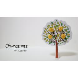 Orange Tree (Gimmick and Online Instructions) by Hugo Choi - Trick wwww.magiedirecte.com