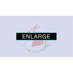Enlarge (DVD and Gimmicks) by SansMinds - DVD wwww.magiedirecte.com