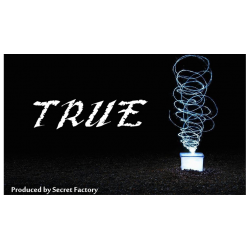 TRUE (Gimmicks and Online Instructions) by Mr. K & Secret Factory wwww.magiedirecte.com