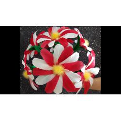 DIYANA FLOWER (2 pièces) wwww.magiedirecte.com