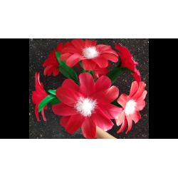 RED FLOWER (2 pièces) wwww.magiedirecte.com