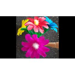 Classic Flower (No.5) by Black Magic - Trick wwww.magiedirecte.com