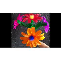 Classic Flower (No.6) by Black Magic - Trick wwww.magiedirecte.com