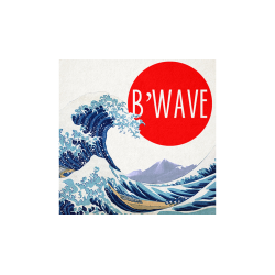 B'Wave DELUXE by Max Maven (Gimmicks and Online Instructions) - Trick wwww.magiedirecte.com