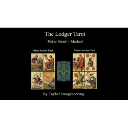Ledger Major and Minor (2 Jeux Format poker) Arcana de Taylor Imagineering wwww.magiedirecte.com