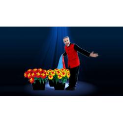 DANCEOFFLOWERS wwww.magiedirecte.com